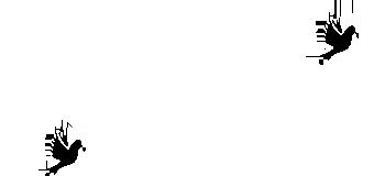 Bestattungen Gebrüder Quante Südkirchen - Logo